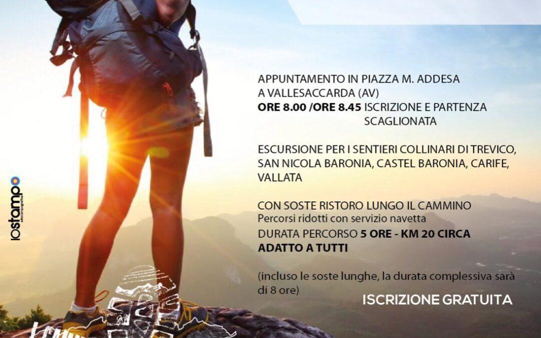 """""""Trekking in Baronia"""" 2°Edizione il 18 ottobre 2020 a Vallesaccarda"""